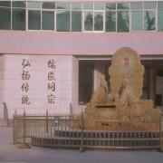 曲阜中医药学校