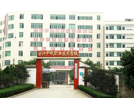 合江少岷职业技术学校